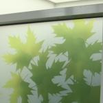 QEH-window-film